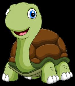 My Turtle Is the Sporting Sort by Kenn Nesbitt