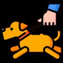I Took My Doggy for a Walk by Kenn Nesbitt