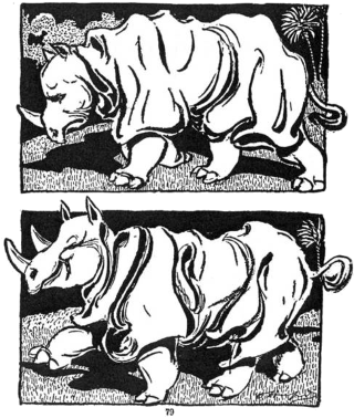 The Rhinoceros by Oliver Herford
